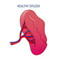 healthy spleen icon cartoon style vector image