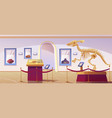 historical museum interior with dinosaur skeleton vector image