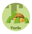 abc cartoon turtle3 vector image vector image