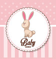 baby shower card invitation - bunny decorative vector image