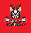 bulldog in costume christmas deer on red vector image vector image
