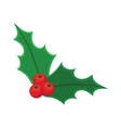 Holly berry Christmas vector image vector image