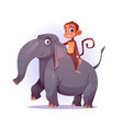 monkey riding on elephant back cartoon characters vector image