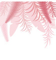 pink top tropical background with palm leaves vector image vector image