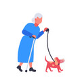 senior woman walking with dog in muzzle vector image