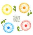 set colorful flower vector image