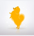 yellow little dog is standing on its hind legs vector image vector image