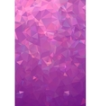 Abstract polygonal plum geometric background Low vector image vector image