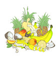composition from tropical fruits vector image