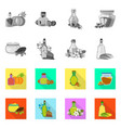 isolated object of healthy and vegetable icon set vector image