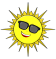 Sun shades vector image vector image