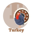 ABC Cartoon Turkey vector image vector image