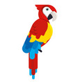 colorful cockatoo bird in the wild vector image vector image
