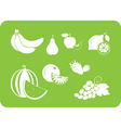 fruit white silhouette vector image vector image