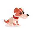 jack russell terrier character sitting on the vector image vector image
