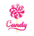 pink sign candy and colorful pink striped candy vector image vector image