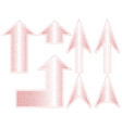 rose gold arrows with circuit vector image vector image