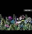 Seamless border of wild flowers