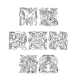 Square decorative celtic motifs of animals and vector image