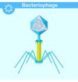 Bacteriophage - bacterial dna virus vector image vector image