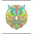 Bright colorful print with the sketch owl Modern vector image vector image