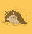 lion portrait on a colored background vector image vector image