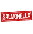 salmonella grunge rubber stamp vector image vector image