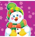 Snowman on green background with patterns vector image vector image