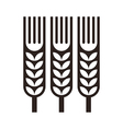 Wheat ear icon vector image vector image
