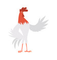 a cock domestic animal vector image vector image