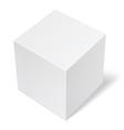 Package Cardboard Box vector image vector image