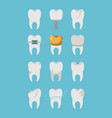 teeth different type set on color poster vector image