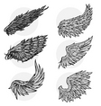 wing set vector image vector image