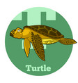 abc cartoon turtle vector image vector image
