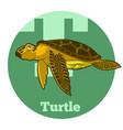 abc cartoon turtle vector image