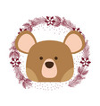 bear only face vector image