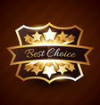 best choice label design with golden stars vector image vector image