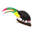 funny toucan icon cartoon style vector image