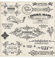 Page Decoration Vintage Frame collection vector image