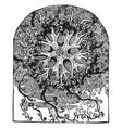 singular star fish vintage vector image vector image