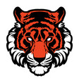 tiger animal mascot head logo vector image vector image