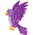 Bird with purple feather vector image