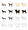 dog dachshund chow chow pug breed labrador dog vector image vector image