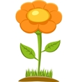 Of Flower vector image vector image