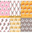 set cute animals seamless patterns vector image