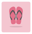 flat icon beach sandals vector image