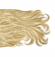 blonde hair vector image vector image
