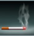 cigarette with smoke in form a demon vector image