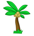 coconut tree cartoon vector image vector image