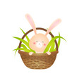 cute smiling rabbit sitting in basket filled with vector image